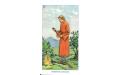 Языческое Таро (русское издание)